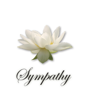 Sympathy-image